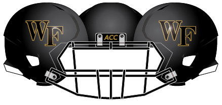 Wake Forest 2013 Black Matte Gold Outline Helmet
