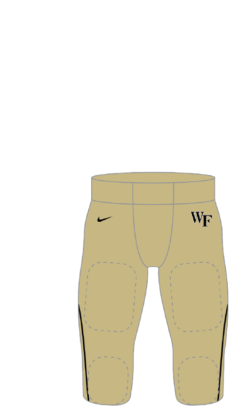 Wake Forest 2014 gold Pants